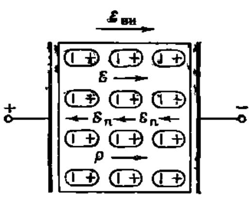 Поляризований діелектрик